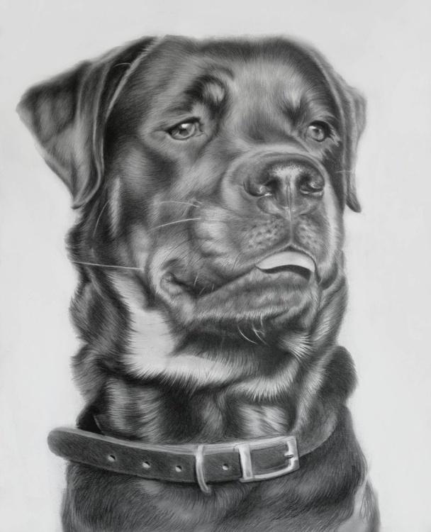 My latest pet portrait commission... - Image 0