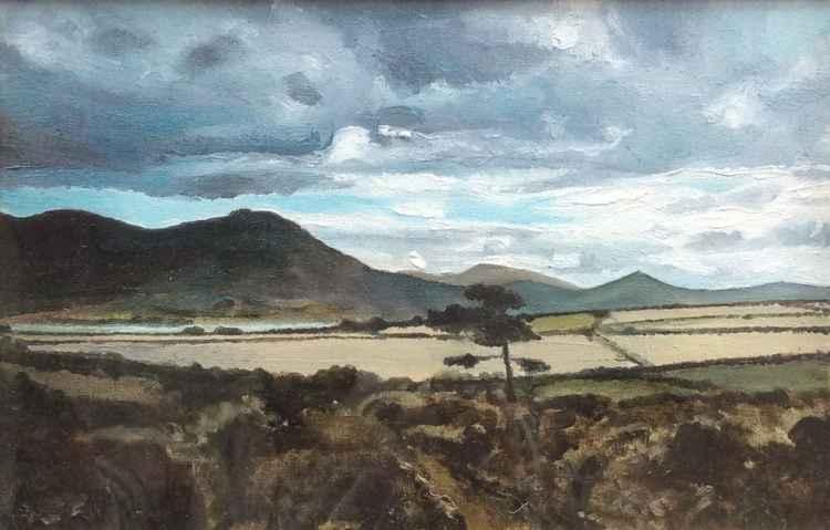Irish Landscape (2010)