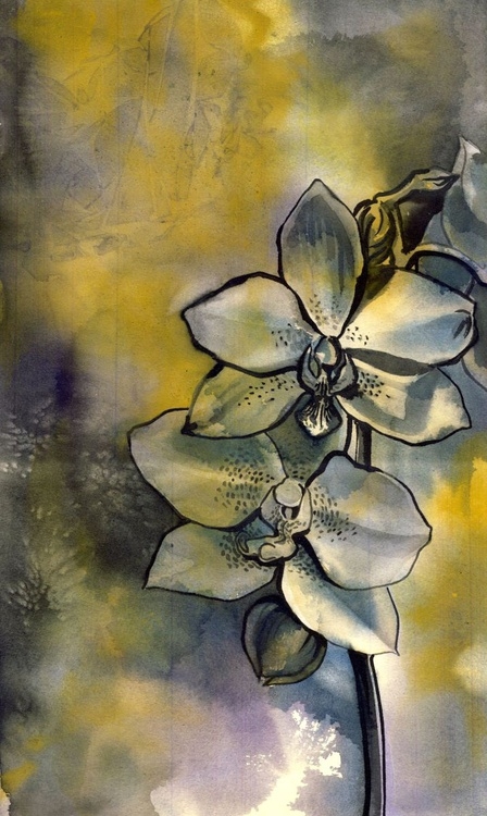 blue orchid with yellow - Image 0