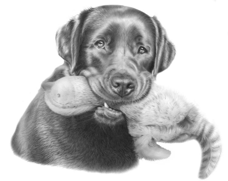 A4 Pet Portrait Commission your own... - Image 0