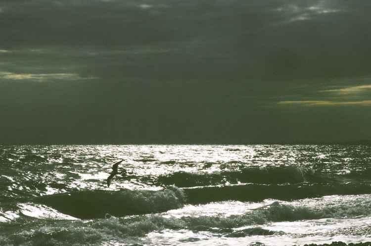 Calming anxiety sea