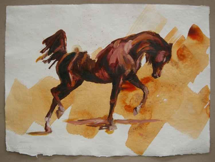 Arabian V (study) -