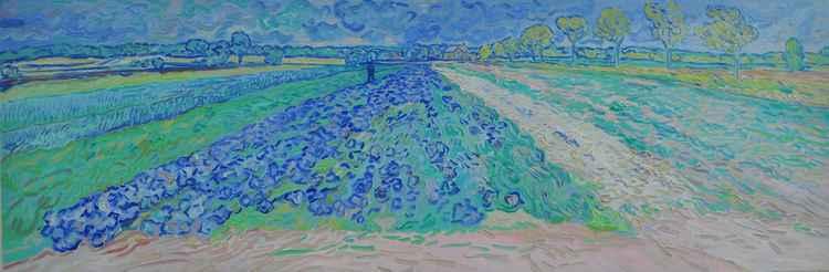 Purple cabbages on organic farm -
