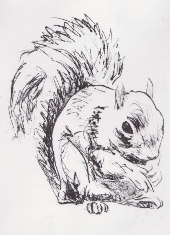 Squirrel - Image 0