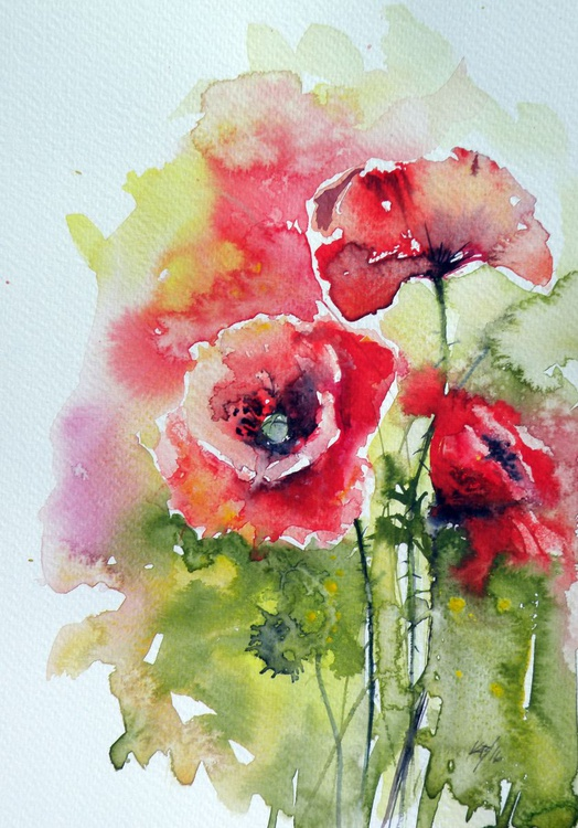 Poppies of summer - Image 0