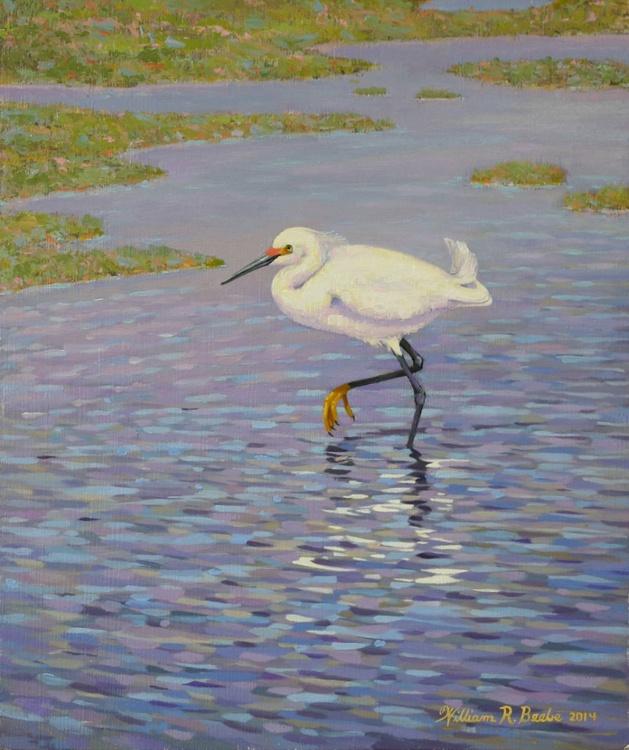 Snowy Egret Slow Walking - Image 0