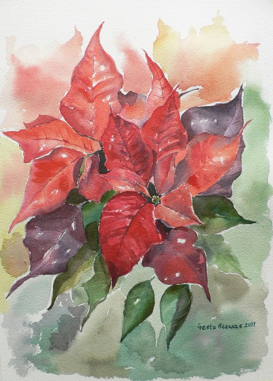 Poinsettias, ready to hang, watercolor flowers - Image 0