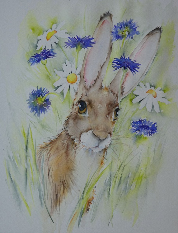 The Hare Is There - Image 0