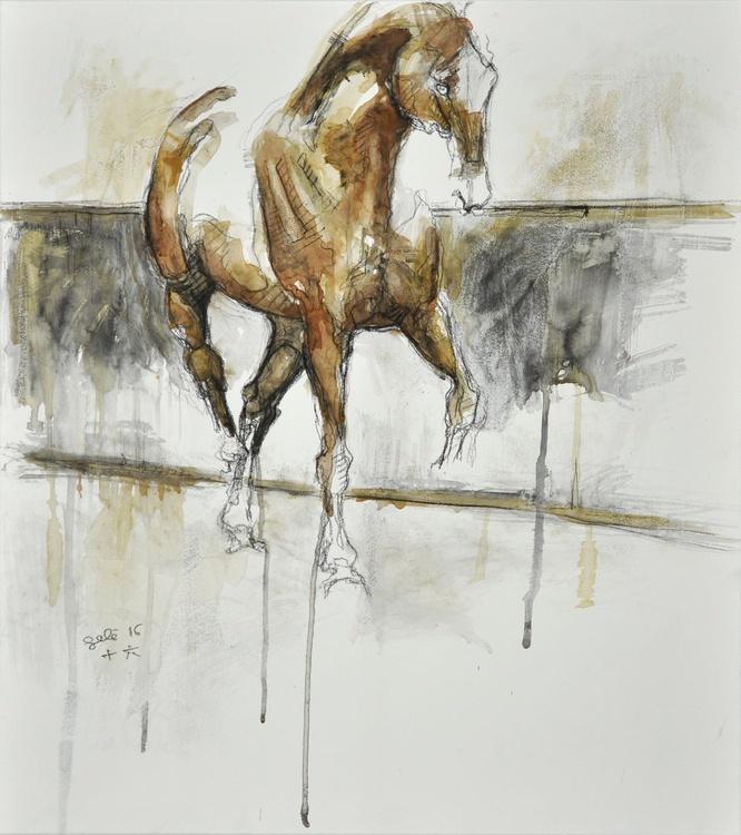 Nu Equin 30t - Image 0