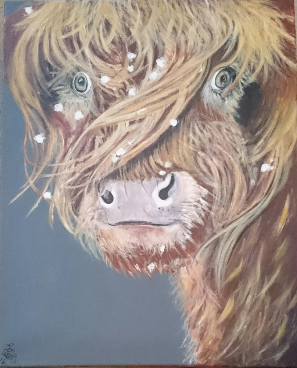 'Gracie The Highland Cow' - Image 0