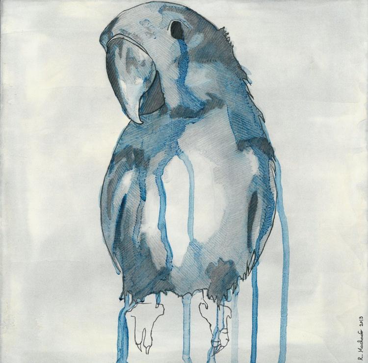 Blue Parrot - Image 0