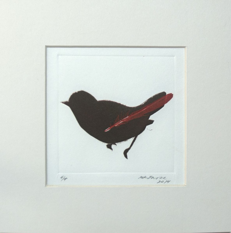 Brown bird with red feather - Image 0