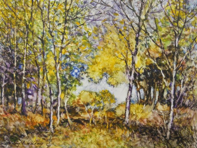 Woodland Hike - Image 0