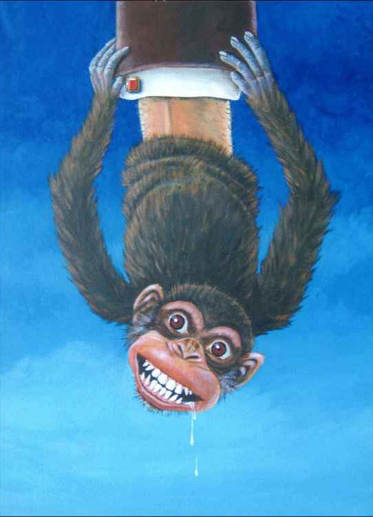 Monkey Up Sleeve -