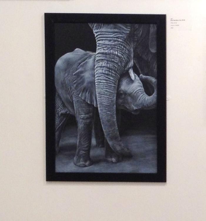Elephant's Pride and Joy - Image 0