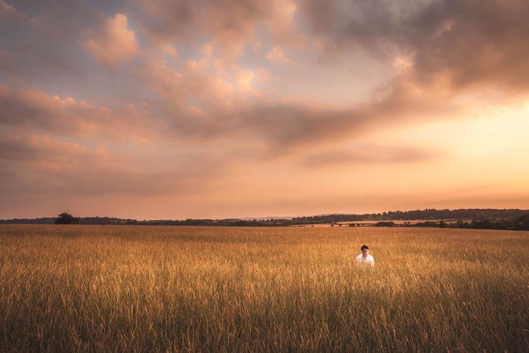Fields of Dreams - Image 0