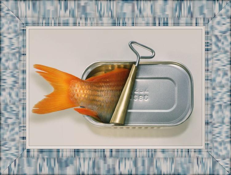 Fish Can't on Aluminium - Image 0