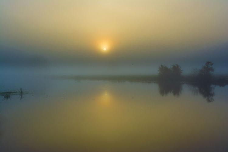 Misty Fenland dawn - Image 0