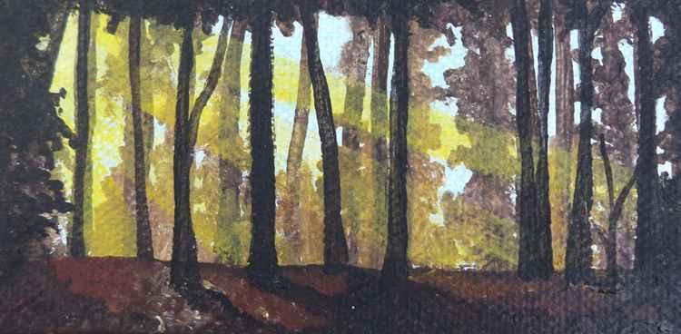 Small Woodland.