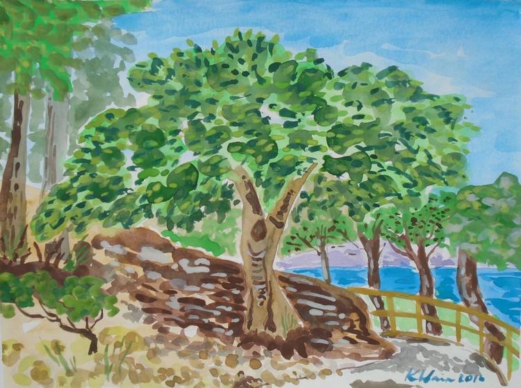 Trees on the Faro walk - Image 0