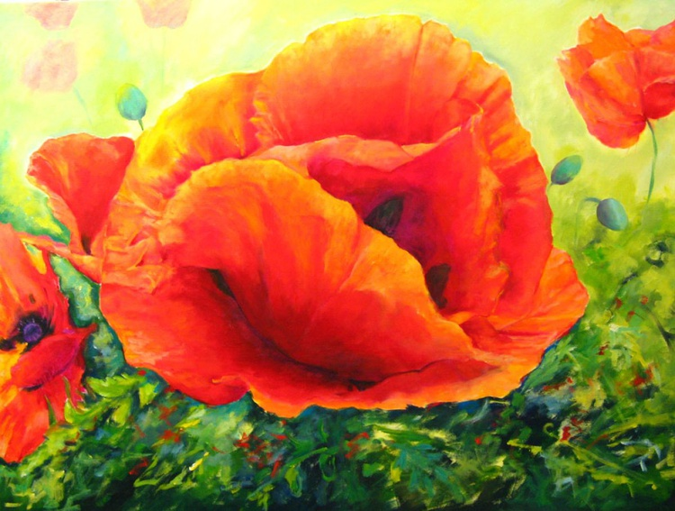 A Passion for Poppies - Image 0