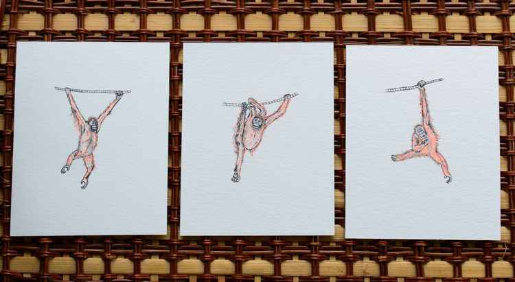 King of The Swingers - Orangutan Triptych