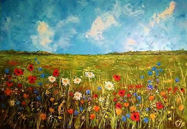 Wildflower meadow -