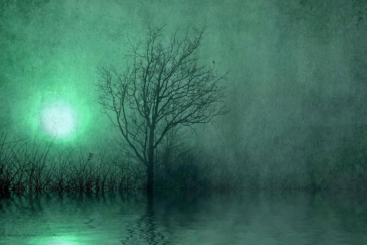 Shining Darkness - Image 0