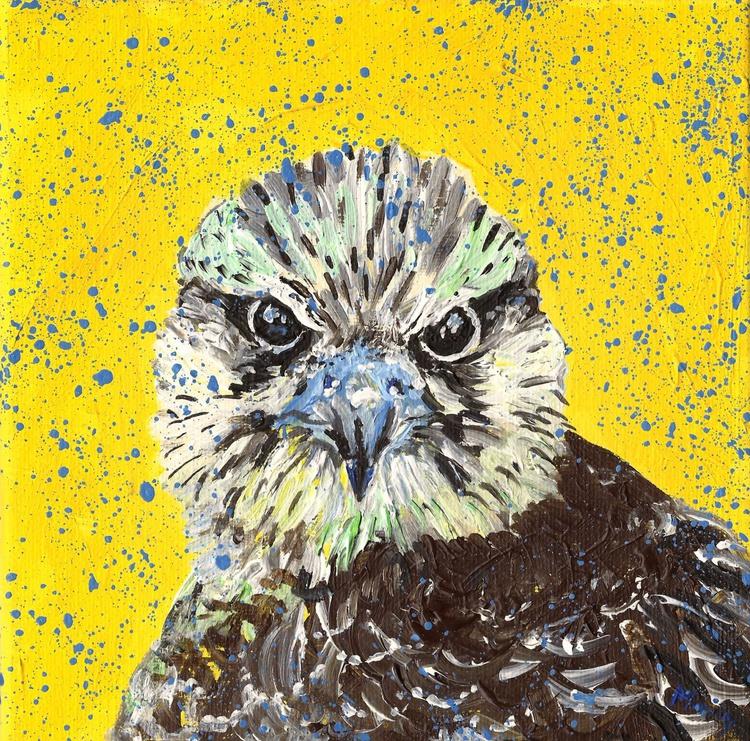 """""""Falcon"""" - Image 0"""