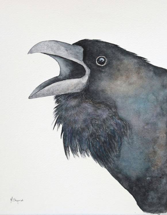 Raven IV - Image 0
