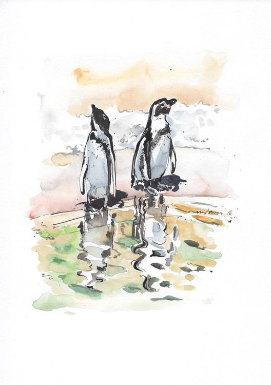 Humboldt penguins - Daily Bird #13 - Image 0