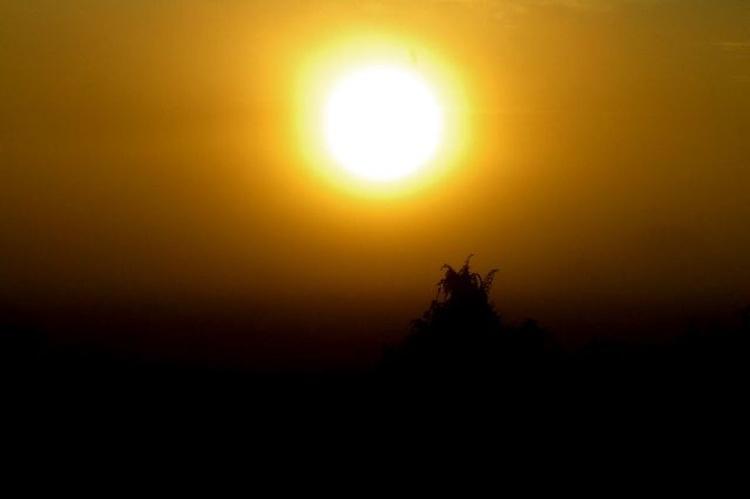 African Sunrise - Image 0