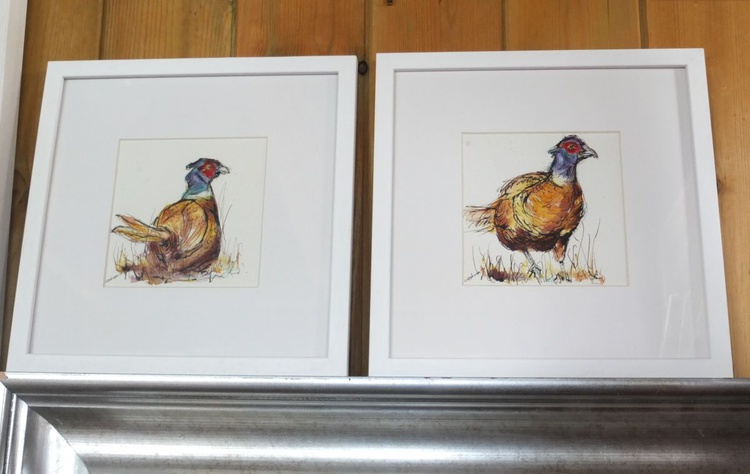 Brace - Set of two ink & watercolour pheasant paintings - Image 0