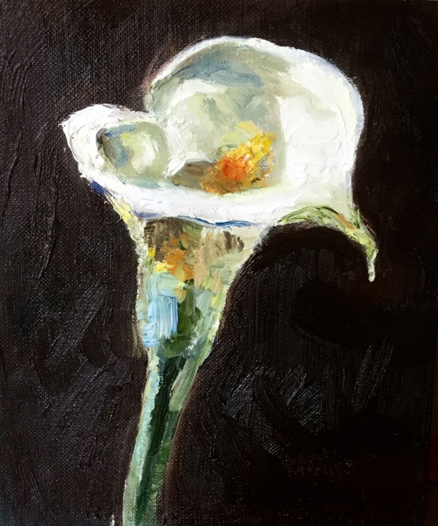 Arum Lilly - Image 0