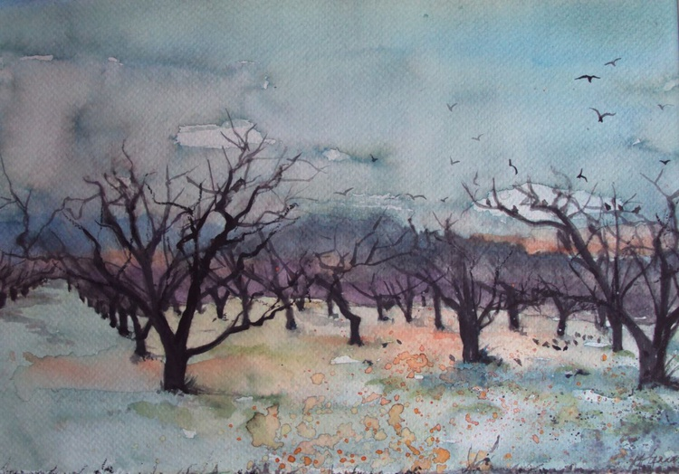 Winter Orchard - Image 0