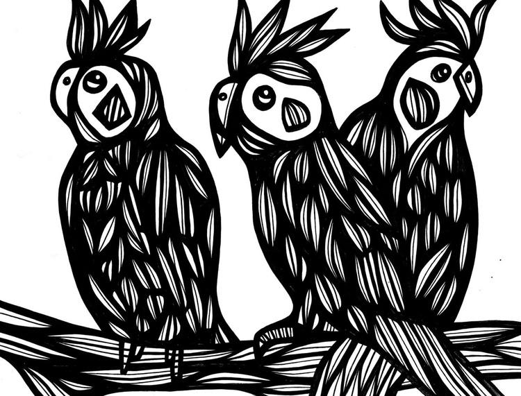 Three Cockatoos Original Drawing - Image 0