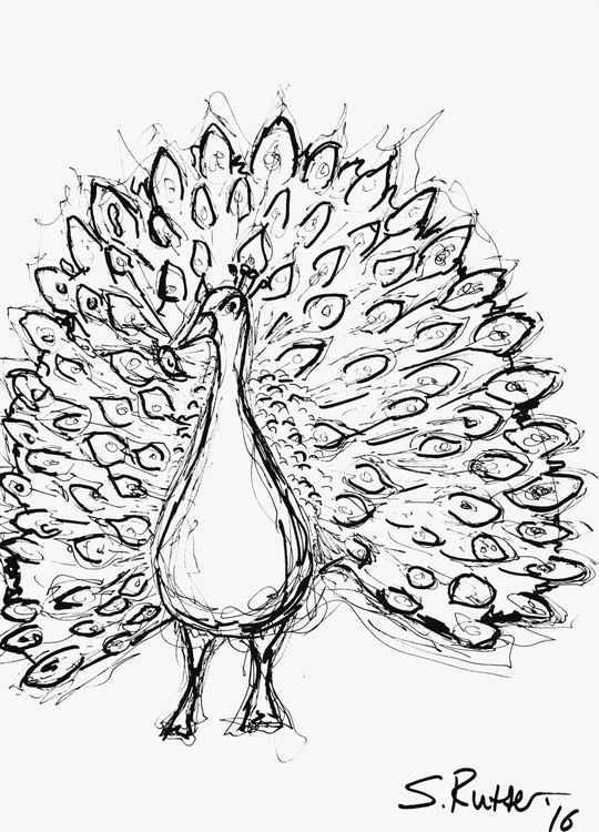 Fancy Bird -