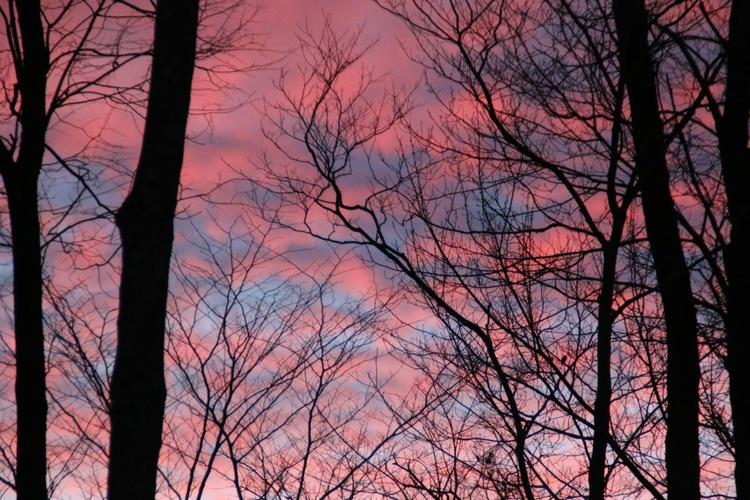 January  Early Morning Light - Image 0