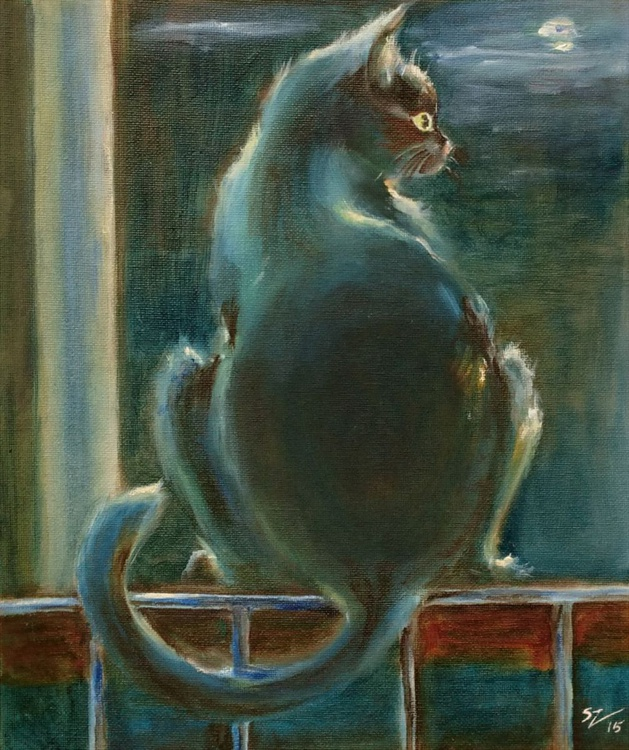 Cat in the Moonlight - Image 0