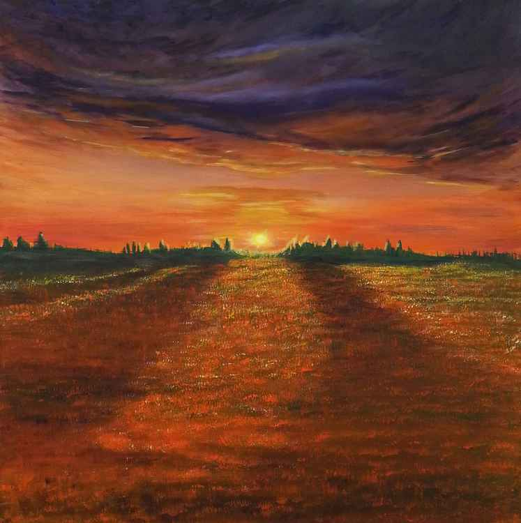 Sunset over Fields of Gold