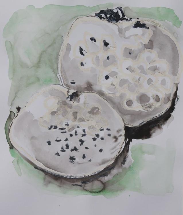 """Puff Ball Mushrooms"" - Image 0"