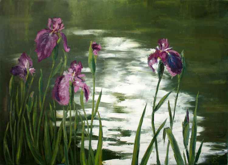 Pond with irises -