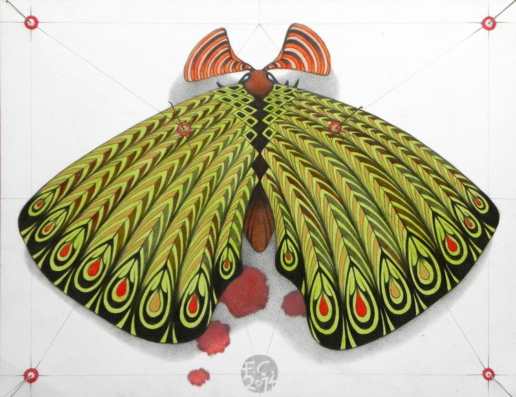 green moth - Image 0