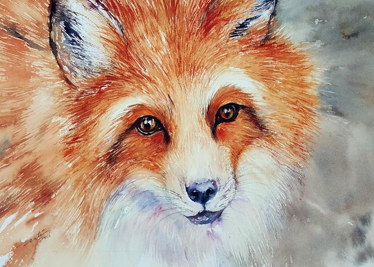 Red Fox_Velvet - Image 0