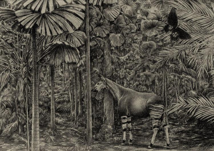 forest giraffe - Image 0