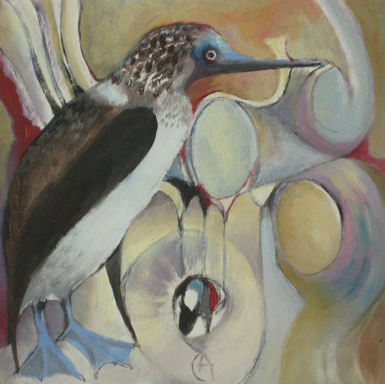 Blue Footed Booby - Image 0