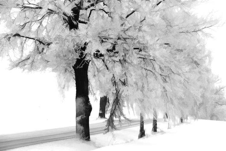 Crisp and white - Image 0