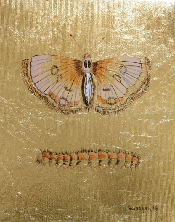 My Little Golden Moth Oil Painting on Lacquered Golden Leaf - Image 0