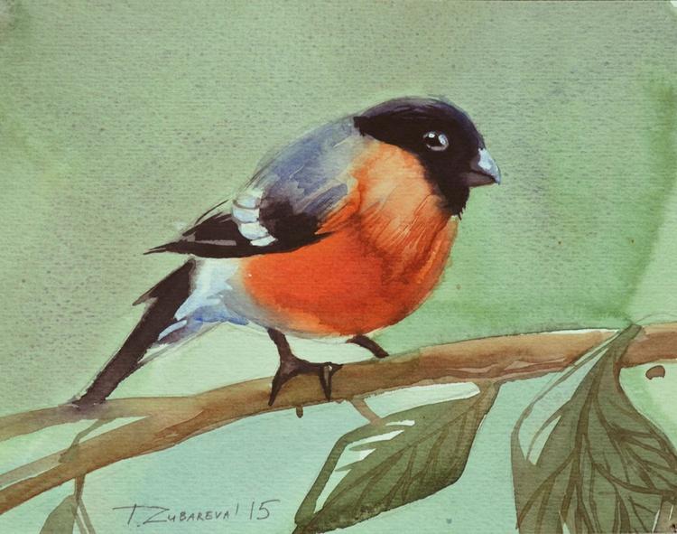 Bullfinch - Image 0