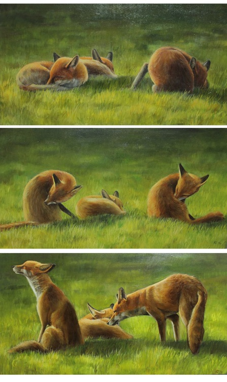 Foxes in the Sun Triptych - Image 0